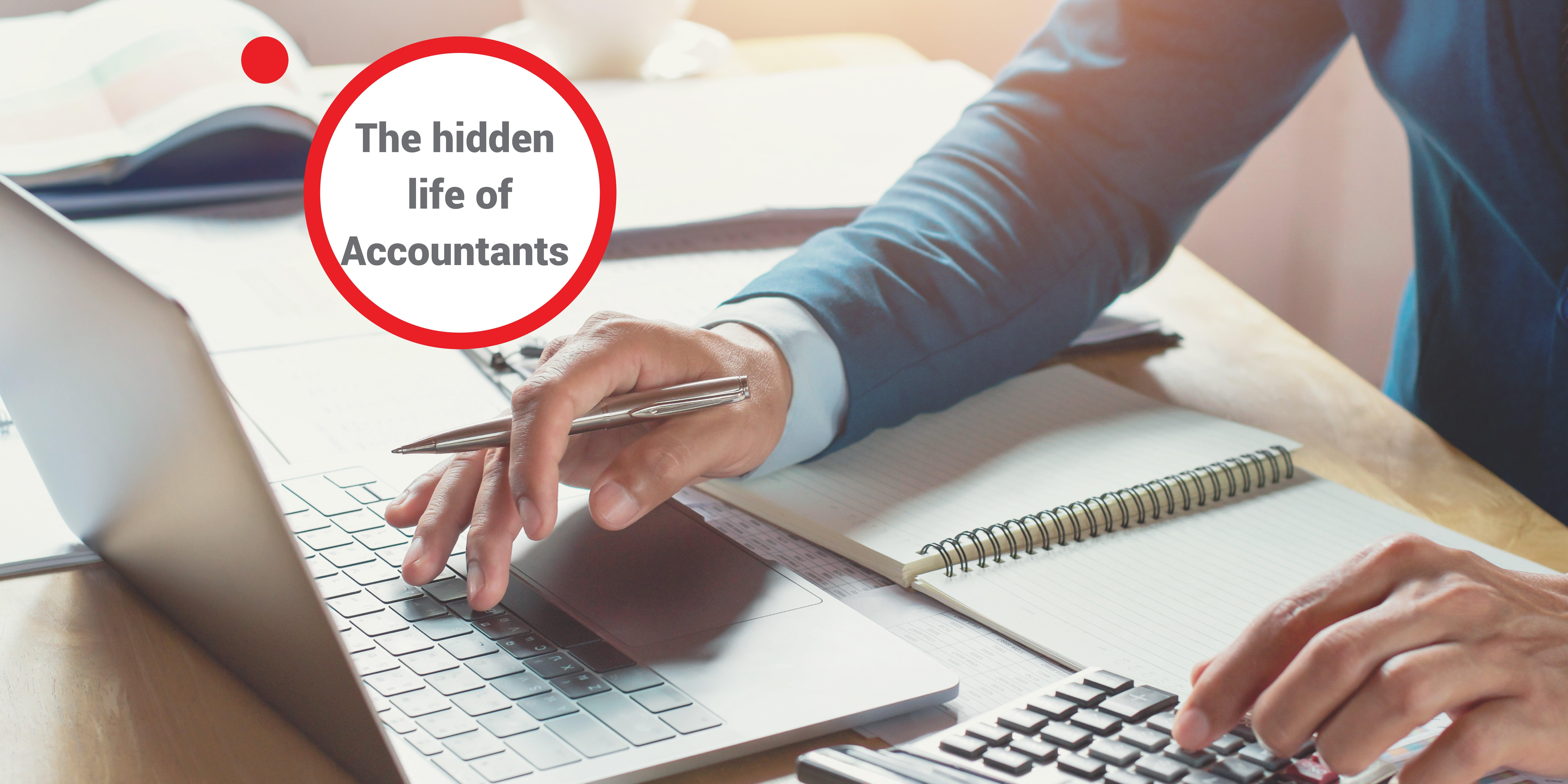 The Hidden Life of Accountants